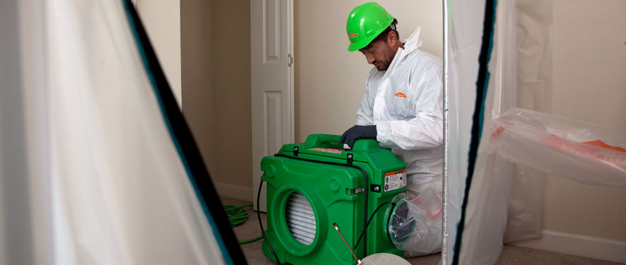 Shreveport, LA mold cleanup